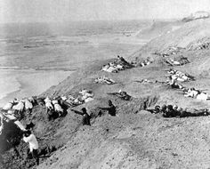 From the heights above the Gallipoli-beaches the Turks have a open field of fire. Below them the allied troops. For the Turks the battle sometimes looked like a shooting-match.  (Picture made by a German war-photographer, Gallipoli, 1915)