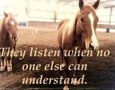 This describes my relationship with my horses an me. They hear me out on everything.