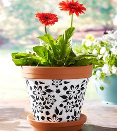 LOVE this terracotta painted pot!