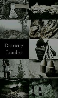 The Hunger Games Aesthetics: District 7