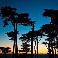 Sunset near Lands End, San Francisco