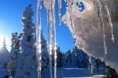 Cette auberge, sur les rives du lac Vietonen à 65 km au nord-ouest de Rovaniemi, offre des chalets en pleine forêt et quelques chambres. L'ambiance y est chaleureuse et familiale.