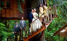 Channel Your Inner Tarzan and Jane With a Treehouse Wedding