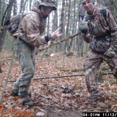 Funny trail cam pic
