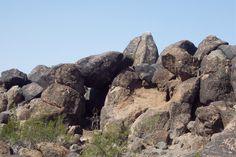Painted Rocks Petroglyphs, AZ.
