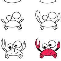 Dessiner un crabe  Apprendre à dessiner