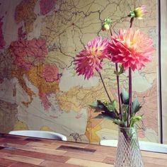 vintage map dahlia flowers