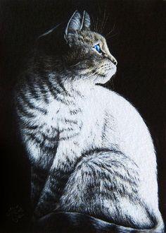 NFAC NOV Giclee ACEO PRINT Kitten SITTING CAT Kitty Pet Scratchboard Scratch Art Miniature