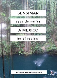 Sensimar Seaside Suites Hotel Review   Mexico   The Caribbean   Beach Holidays