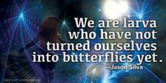 """""""We are larva who have not turned ourselves into butterflies yet.""""—Jason Silva"""