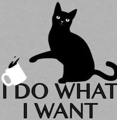 I Do What I Want T-Shirt SnorgTees // cat knocking over coffee mug. Very smug cat tee. I Do What I Want T-Shirt SnorgTees // cat knocking over coffee mug. Very smug cat tee. I Love Cats, Cute Cats, Funny Cats, Funny Animals, Cute Animals, Cats Humor, Crazy Cat Lady, Crazy Cats, Gatos Cats