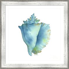 Choose your favorite sea shell watercolor paintings from millions of available designs. All sea shell watercolor paintings ship within 48 hours and include a money-back guarantee. Shell Drawing, Painting & Drawing, Watercolor Paintings, Seashell Painting, Seashell Art, Art Plage, Poster Mural, Beach Watercolor, Painted Shells