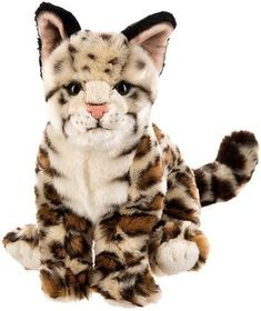 Webkinz Stuffed Animals, Cute Stuffed Animals, Cute Animals, Plush Animals, Ocelot, Baby Doll Nursery, Baby Dolls, Webkinz Signature, Baby Doll Accessories