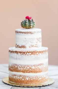 Wedding Cakes   Phoenix Wedding Cake and Event Bakery  Scottsdale AZ     Naked Wedding Cakes   Cactus Wedding Cakes   Phoenix Wedding Cake and Event  Bakery  Scottsdale