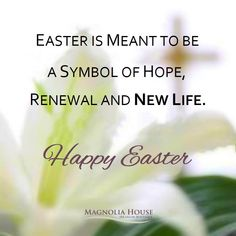 May blessings of love, peace, happiness and 𝗻𝗲𝘄 𝗹𝗶𝗳𝗲 be upon you and all of your loved ones 𝙃𝙖𝙥𝙥𝙮 𝙀𝙖𝙨𝙩𝙚𝙧! 🌷💞 . . #happyeaster #easter #canada #easterweekend #newlife #love #life #peace #canada #happiness #meditation #renewal #uplifting #easterbunny #family #longweekend #magnoliahouse #magnoliahousespa #Waterdownbia #Waterdown #BurlOnt #Burlington #Dundas #HamOnt #Hamilton #Ancaster #Oakville #GTA #Mississauga #Milton #flamborough Magnolia House, Easter Weekend, Long Weekend, New Life, Gta, Happy Easter, Hamilton, Blessings, Meant To Be