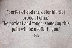 """""""perfer et obdura, dolor hic tibi proderit olim."""
