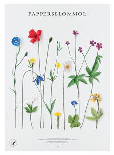 Paper flowers by Fideli Sundqvist