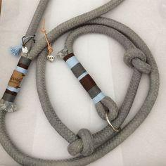 Hootsuite Source by Dog Shock Collar, Choosing A Dog, Rope Leash, Dog Rooms, Best Dog Training, Dog Hacks, Dog Wedding, Dog Accessories, Dog Care