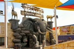 Emirates Park Zoo Abu Dhabi - Abu Dhabi Desert Safari | Desert Safari Abu Dhabi | Abu Dhabi Dhow Cruise