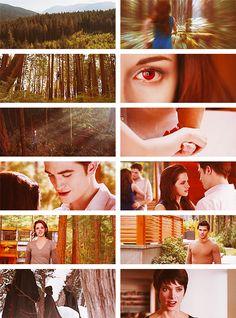 Breaking Dawn Part 2 Twilight Scenes, Twilight Quotes, Twilight Movie, Twilight Saga, Edward Bella, Edward Cullen, Bella Cullen, Stephanie Meyers, Breaking Dawn Part 2