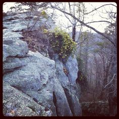 near Seven Room Rock, Gadsden, AL