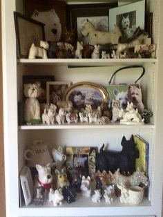 Terrier collection - nice & small - fun display