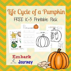 Autumn is the perfect time for studying the life cycle of a pumpkin. There are so many hands-on science projects to do. And, here's a free printable for your K-3 learners! | embarkonthejourne...