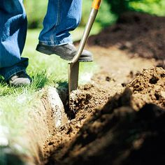 great tips for starting landscaping from scratch