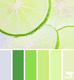 citrus color