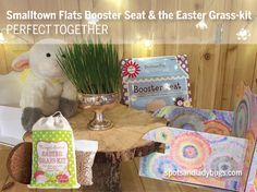 Grow fresh grass for the Easter Bunny with the Easter Grass kit. Fun Easter activity for the kids, and it only takes days to grow! Easter Activities, 10 Days, Easter Bunny, Grass, Holiday, Christmas, Valentines, Kit, Valentine's Day Diy