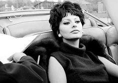 Diplo-style: Sophia Loren....