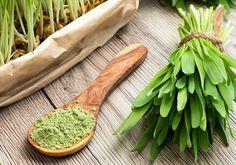 Basische Ernährung mit Gerstengras: Abnehmen – Entsäuern – Entgiften (+Gerstengras-Rezepte) Vitamin D, Superfoods, Alternative, Salad, Kitchen, Diy, Health Benefits, Medicinal Plants, Feel Better