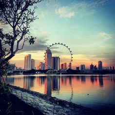 such an amazing city! Best Places In Singapore, Singapore City, Singapore Travel, Best Places To Live, Places To See, Lost Highway, Sing Song, Ferris Wheels, Life Is An Adventure