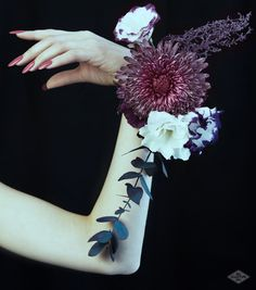Bio Sculpture Gel Autumn / Winter 2015 / 16 Romantic Gothic Collection #203