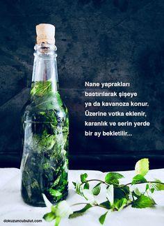 ✔ Cocktails Recipes Easy Non Alcoholic Bourbon Cocktails, Summer Cocktails, Cocktail Drinks, Alcoholic Drinks, Limoncello, Sangria Recipes, Cocktail Recipes, Liqueur Armoire, Skinny Sangria