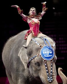 Woman On Elephant #RinglingBrothersCircus #RbcCenter #Raleigh #AskaTicket