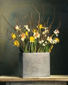Branch arrangements with Daffodils