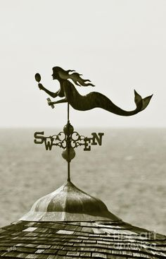 Not a mermaid one, but I think I'd like a weather vane. Completes the warm, fuzzy feeling in my head.