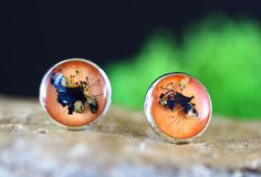 Cercei din flori naturale in rasina creati manual Gemstone Rings, Lily, Gemstones, Jewelry, Earrings, Fragrance, Ear Rings, Jewlery, Stud Earrings