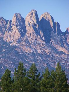 Reaching for the sky, New Mexico Organ Mountians and Pines from WSMR side. photo by nmcowboy. New Mexico Style, New Mexico Homes, New Mexico Usa, Travel New Mexico, Southwest Usa, New Mexican, Land Of Enchantment, Places To Go, Scenery