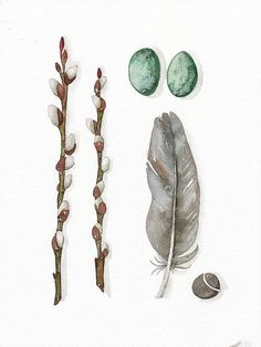 Print Fine Art Illustration Feather Collection No.19 - (5 x 7) Original Watercolor Painting by Lorisworld