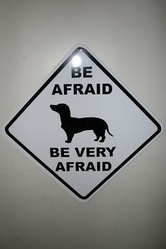 perfect for my Dog Maizie since she got reported to be a possible viscious dog at my aparment complex....lol!