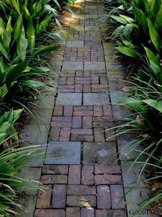 Path Design, Landscape Design, Garden Design, Design Ideas, Design Diy, Stone Garden Paths, Garden Stones, Brick Garden, Garden Paving