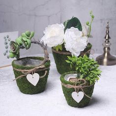 Set of 3 Planter Boxes, Planters, Green Wedding Decorations, Moss Decor, Large Baskets, Hanging Hearts, Party Centerpieces, Small Plants, Wooden Hearts