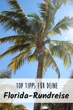 Hier findest du unsere top Tipps für deine Florida-Rundreise #reise #reisen #reiseblog #reiseblogger #usa #florida #reisetipps #travel #rundreise #wanderlust #urlaub