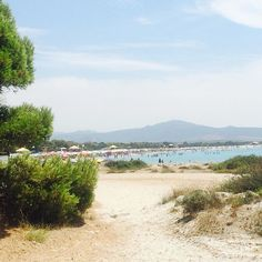 Pranzo #nofilter  #sardegna #wiewlunch #sardinia #summer #summering #estate #estateaddosso #fuoriceilsole #beach #italianbeach #spiggia #dune #portopino #mare #sea #pic #summerpic #sardiniapic #instasardegna #holiday #summerholiday #instalike #paradise - via http://ift.tt/1zN1qff