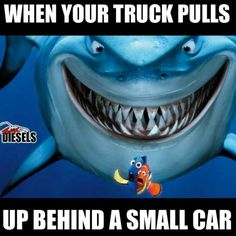 jacked up diesel trucks Truck Quotes, Truck Memes, Funny Memes, Funny Qoutes, Hilarious, Jacked Up Trucks, Old Trucks, Chevy Trucks, Pickup Trucks