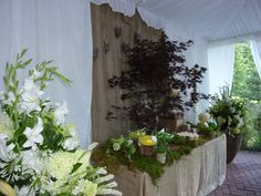 Groups and Weddings can host excellent events at the Whistler Golf Club Whistler, Golf Clubs, Weddings, Plants, Wedding, Flora, Plant, Marriage, Planting