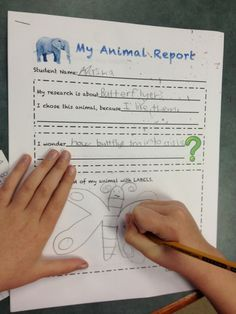 First Grade Introduction to Research