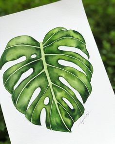 Image may contain: 1 person, plant and outdoor Watercolor Leaves, Watercolour Painting, Painting & Drawing, Leaf Drawing, Plant Drawing, Plant Painting, Fabric Painting, Tropical Art, Tropical Leaves